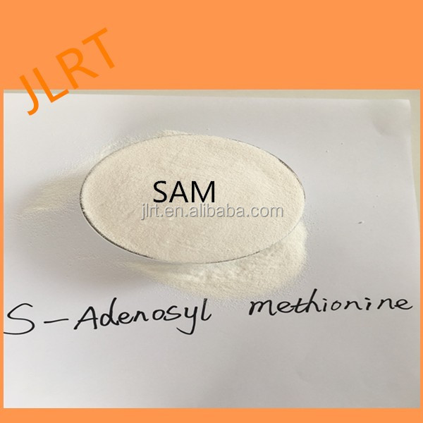100% purity S-Adenosyl-L-methionine Powder SAM in sams internet
