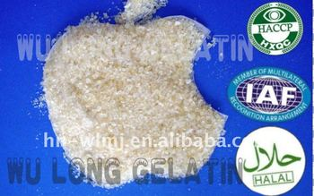 HOT SALE BEST QUALITY Halal Bone Gelatin