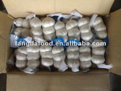 fresh jinxiang garlic (pure white), 3p, mesh bag package