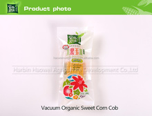 Organic Sweet Corn Cob With Plastic Vacuum Packed