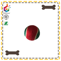 Pet throw chew toy dog tennis ball