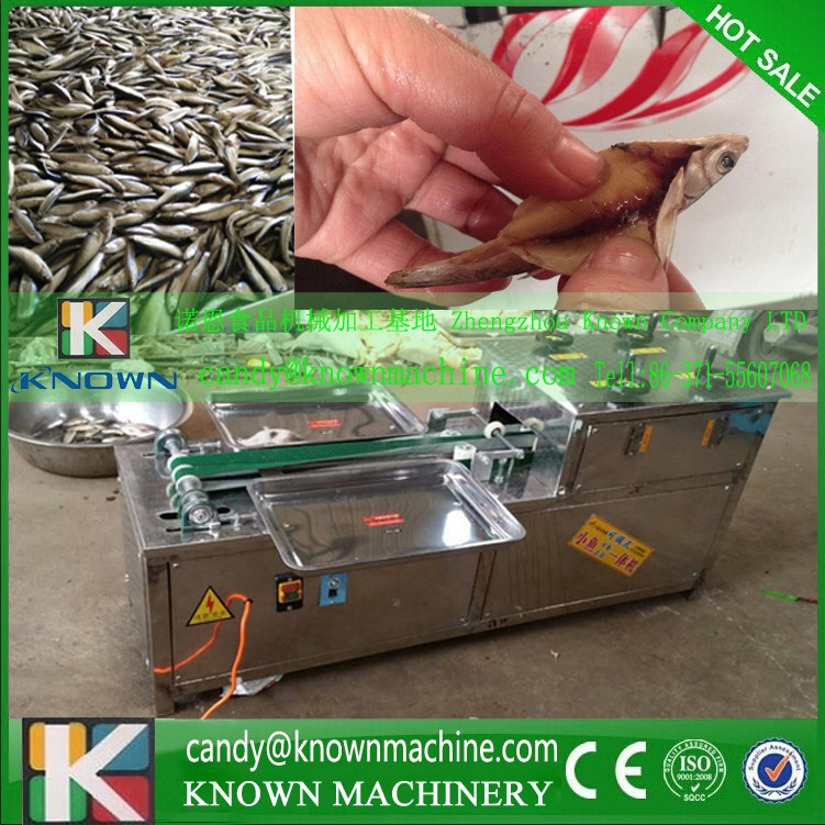 Fish killer /Small Fish Killing Machine/ Fish stomach opening machine