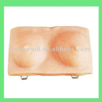 Inspection and Palpation of Breast Model