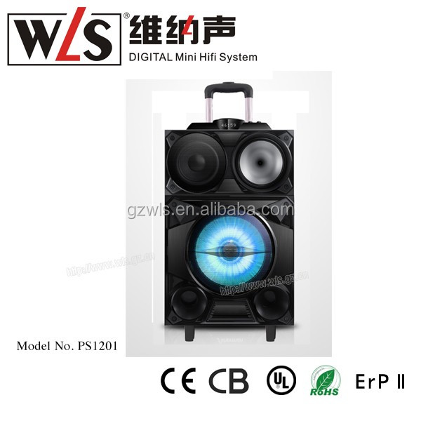12 inch DJ trolley auido speaker ,DJ power portable speaker with BT and wireless microphone