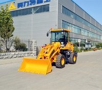 small loader rock lifting equipment for sale