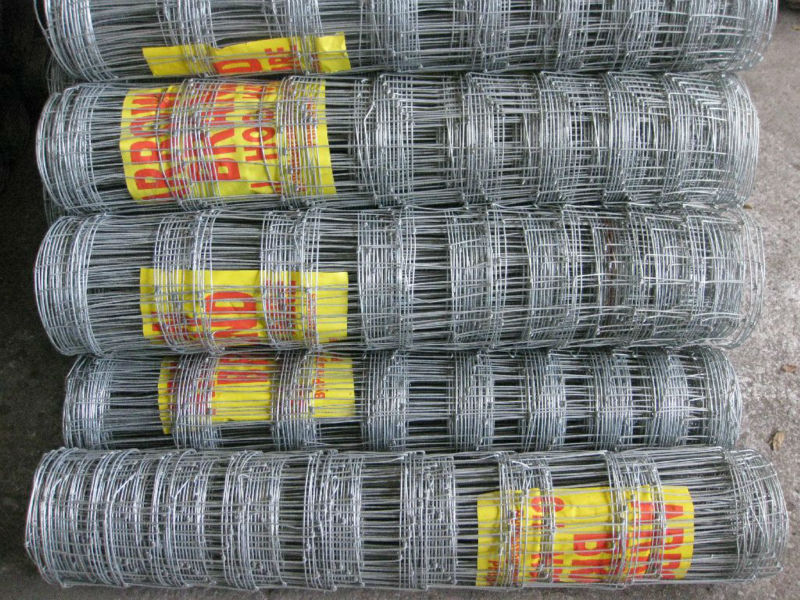 Hot Dipped Galvanized Hingejoint 1.8m deer fence netting fixed knot