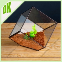 Mini Unique rose gold geometric glass plant pot%%%For home and garden metal brass disposable plant pot