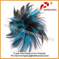 Feather Extensions For Hair