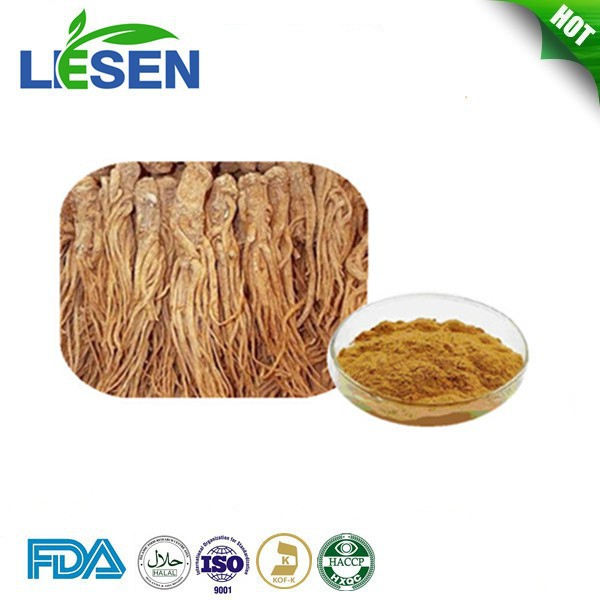 Chinese Angelica Extract Powder / Ligustilide 1% Polysaccharide 50%