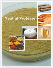 Neutral Protease Enzyme For Flavor