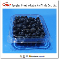 Hotsell Custom Protective Cheap 125g Blueberry Packing Carton