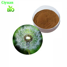 Herbal Supplements dandelion flavonoids 27% dandelion root extract/dandelion extract powder