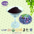 blueberry extract anthocyanins/energy drink