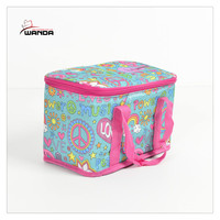 New fashion ice pack cooler bag picnic bag lunch bag
