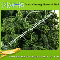 Crude Medicine Panax Ginseng Flower with Free Sample