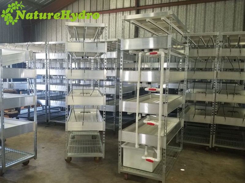 Hydroponic greenhouse ABS grow table with rolling benches