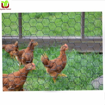 Birds &Chicken Mesh Netting For Poultry Netting Bird Netting