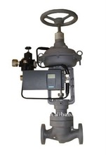 100D Reduce Sound Cage Guided Globe valve