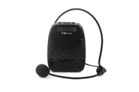 CallVi Portable Voice Amplifier and FM- MP3 with Headset Waist Neck Band