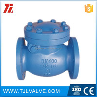 pn10/pn16 ci/di made in china heavy type 1\/2 or 1\/4 f\/f forged brass swing type check valve for water good quality