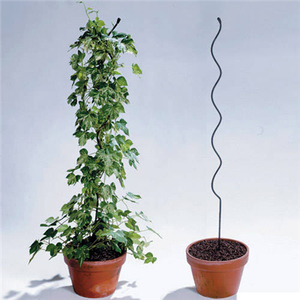 Tomato Support Wire/ Plant Growing Spiral Wire