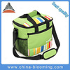 Outdoor Insulated Thermal Lunch Picnic Cooler Bag For Adults