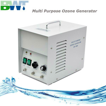 3000 mg/h portable water and air sterilizer ozoniser