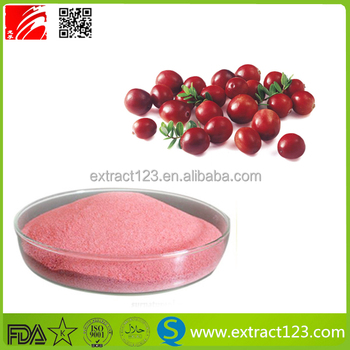 Factory Supply High Quality Cranberry Juice Powder