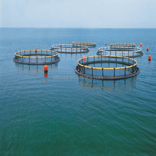 Farming High Quality Fish Cage Net