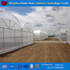 Multi Span Plastic Film Tunnel Greenhouse