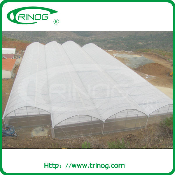 vegetable production greenhouses china for sale
