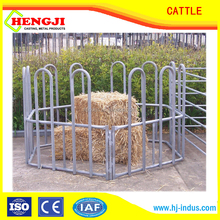 poultry farming cattle feeder