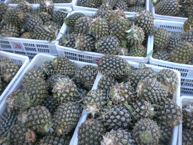 organic delicious health frozen canned pineapple thailand have a good sale in carton