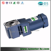 60W 220V ac motor with Spiral bevel right angle gearbox