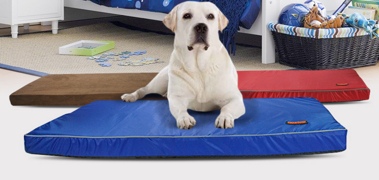 memory foam pet bed dog bed with waterproof material