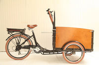 CE approved coffee bike family 3 wheel electric tricycle cargo bike/cheap cargo trike for sale