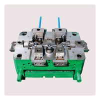 OEM Professional Die Casting Mold Manufacture