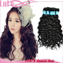 Fast DHL Delivery Service!!! Loose Wave Malaysian Human Hair