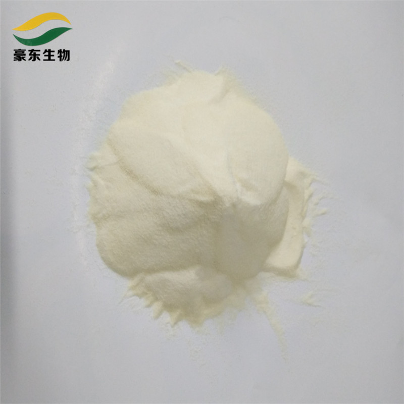 high quality yogurt natural edible skin gelatin glue leaf for food good price