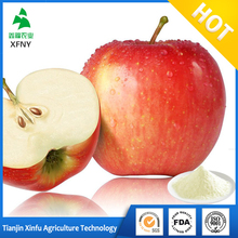 price fresh fruit apple juice concentrate powder