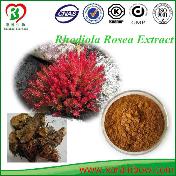 rhodiola rosea p.e for enhancing immunity Professional skin whitening face cream