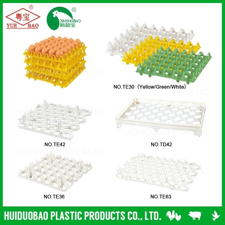 plastic egg tray crate egg chicken/layer cage