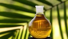 Crude Palm Oil (Cpo) -As Per Poram Malaysia