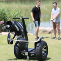 Chinese electric scooter brands scooter for golf course,Chic Golf hot sale 2 wheel electric scooter stand up