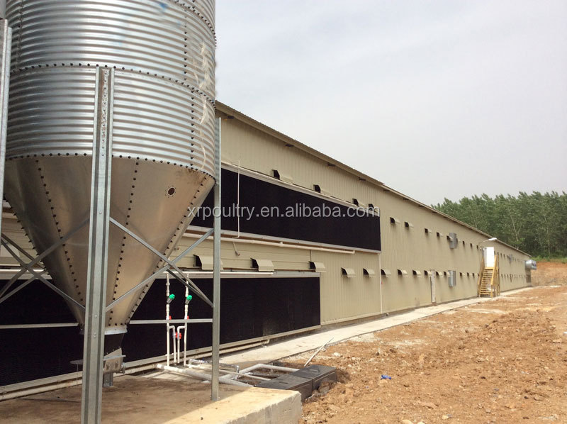 high quality steel structure Turkey broiler poultry shed design
