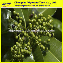 Pure rauwolfia serpentina extract piperine 99%