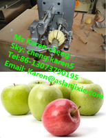 apple juice processing machine /apple peeling machine