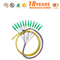 High End Communication Customized Optical PLC Splitter 1x8 fan out pigtail