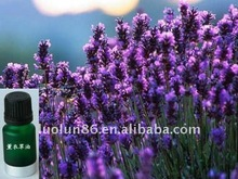 100% natural and pure Lavender essential oil with high quality and purity of best price for hot sale