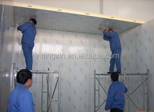 Fruits and vegetables project, Cold storage room price cost